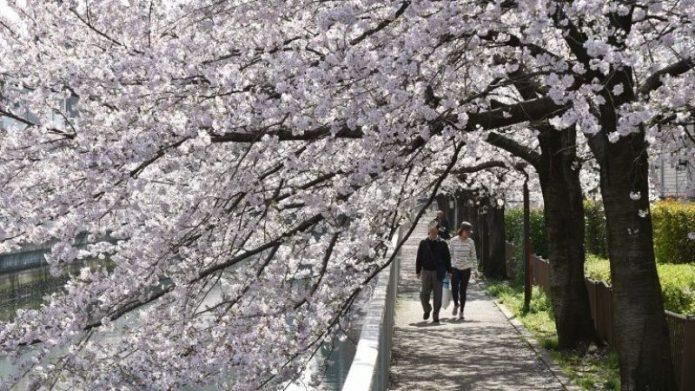 Penghasilan Tidak Sesuai Harapan Buat Penduduk Jepang Enggan Menikah