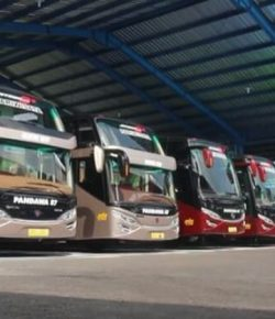 7 Telolet Terbaik Menurut Pencinta Bus