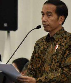 Jokowi Ajak Kepala Daerah Bergerak Cepat
