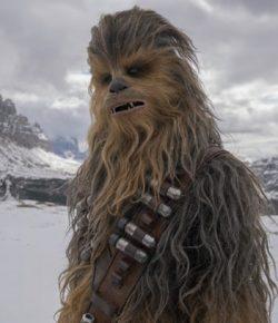 Solo Chewbacca Berbagi Foto Lucu Dengan Lord Of The Rings Cast