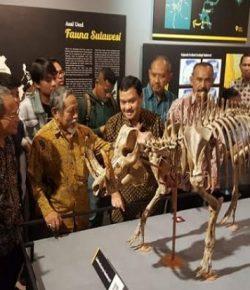 Museum Geologi Bandung Buka Malam Hari