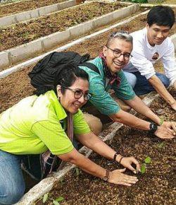 Berita Bintang – Belajar Jadi Petani Modern di The Learning Farm