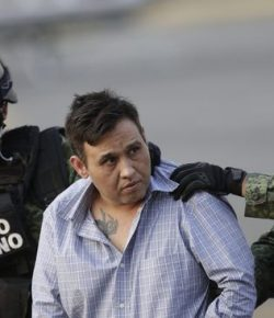 Polisi Meksiko Sita 100 Kilogram Ganja dalam Buah-buahan
